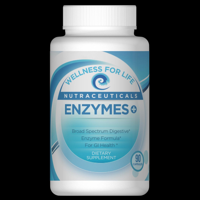 enzymes render