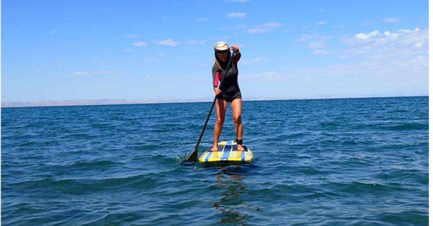 drsusanne-paddleboard