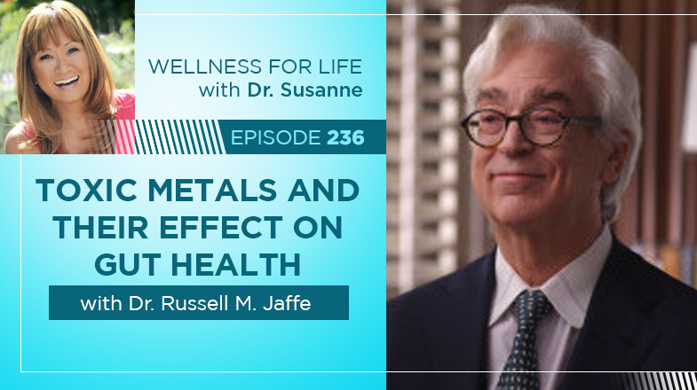 Toxic Metals and Their Effect on Gut Health with Dr. Jaffe